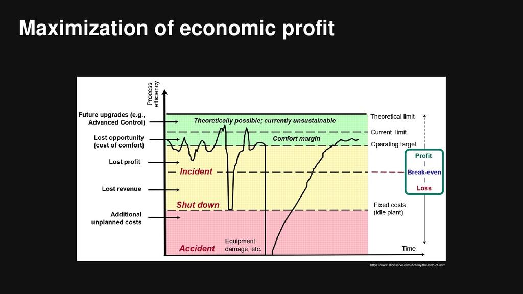 Maximization of economic profit https://www.sli...