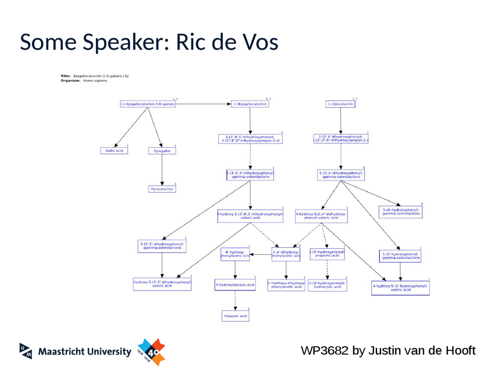 Some Speaker: Ric de Vos WP3682 by Justin van d...