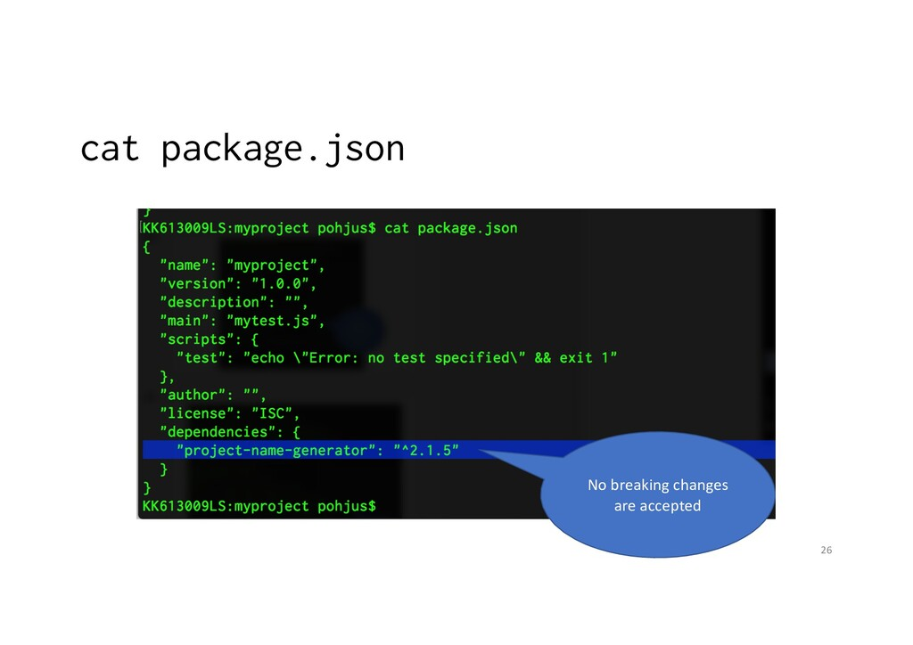 cat package.json 26 No breaking changes are acc...