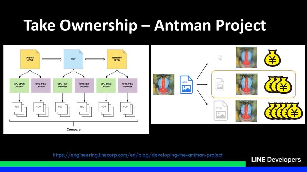 Take Ownership – Antman Project https://enginee...