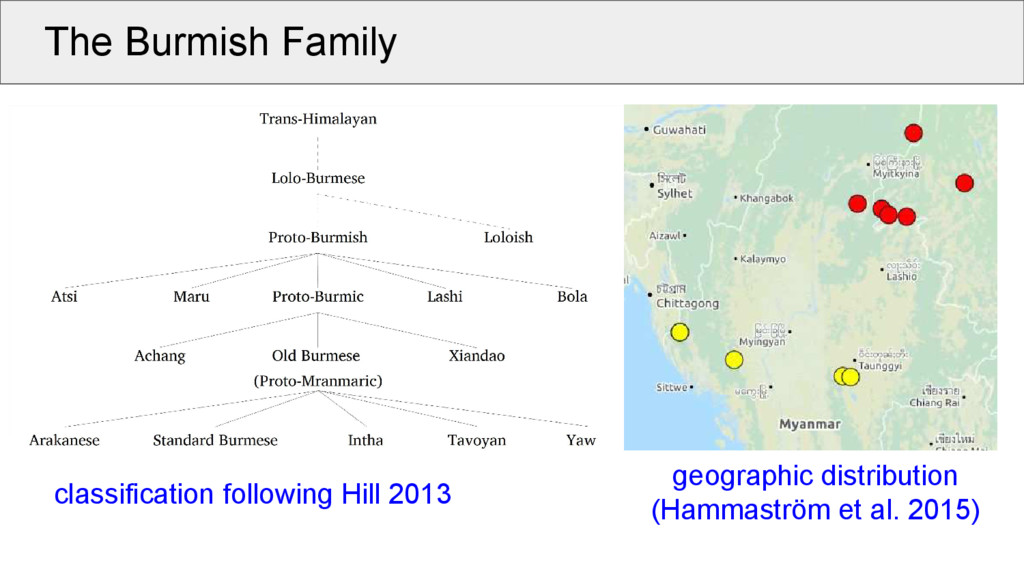 The Burmish Family classification following Hil...