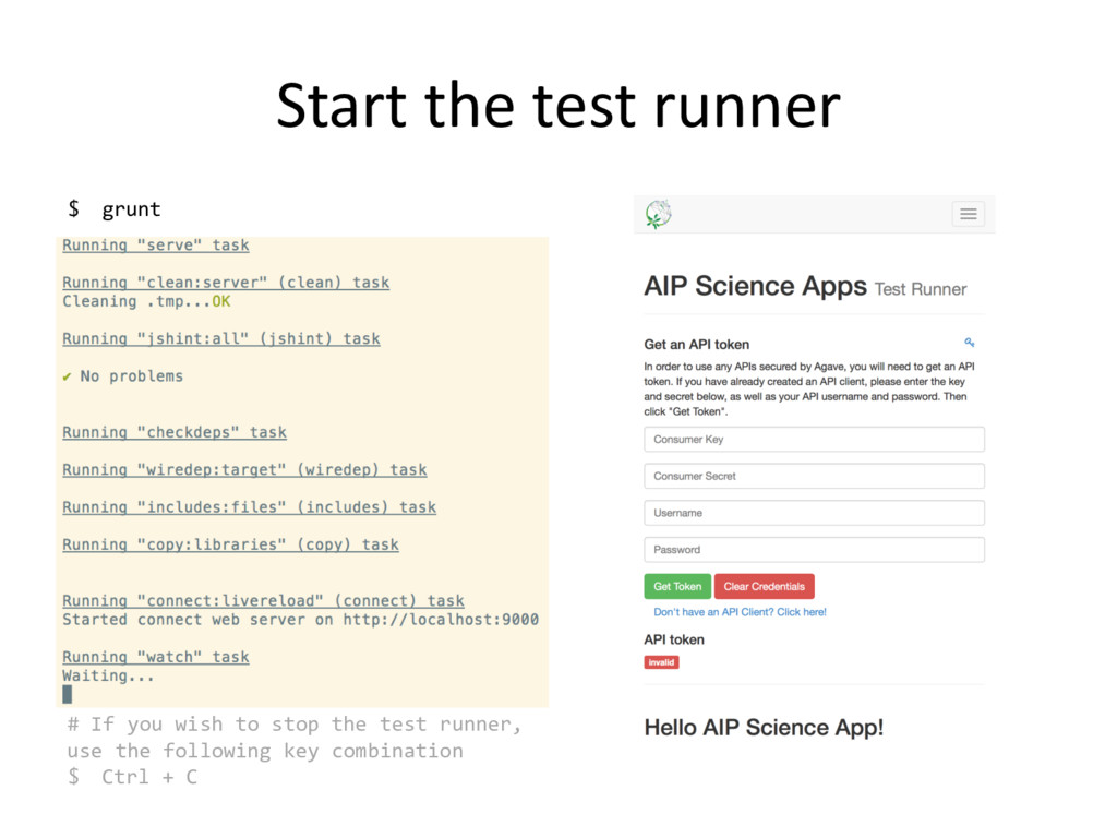 Start the test runner $ grunt # If you wish to ...