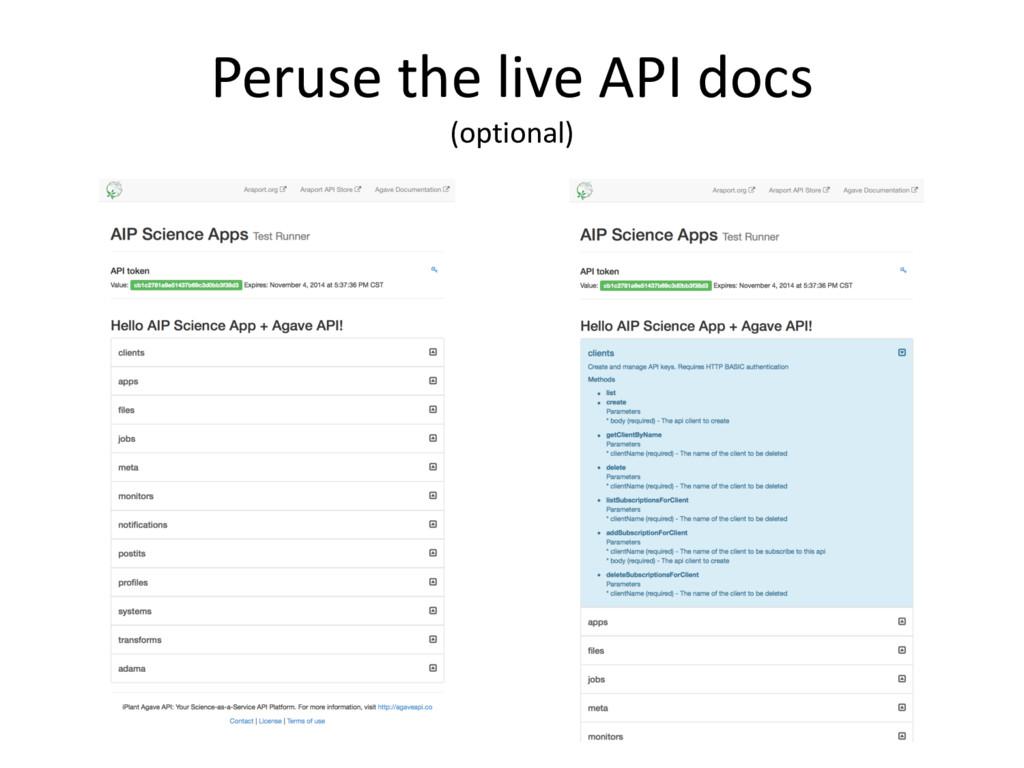 Peruse the live API docs (optional)