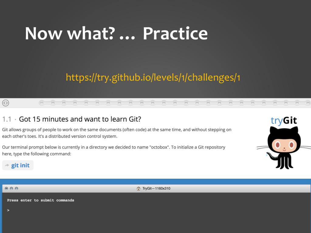 Now what? … Practice https://try.github.io/leve...