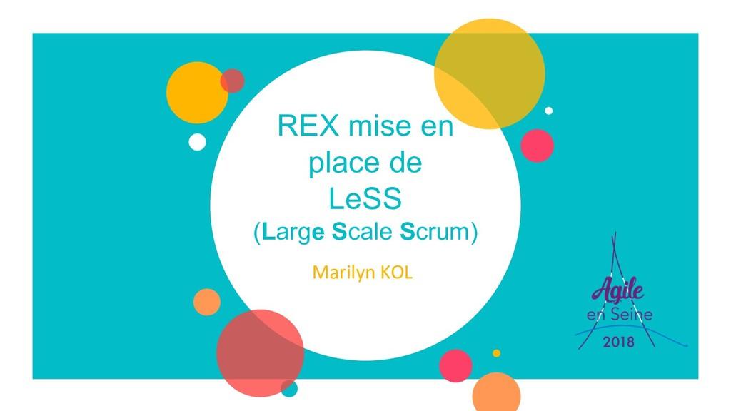 REX mise en place de LeSS (Large Scale Scrum) M...