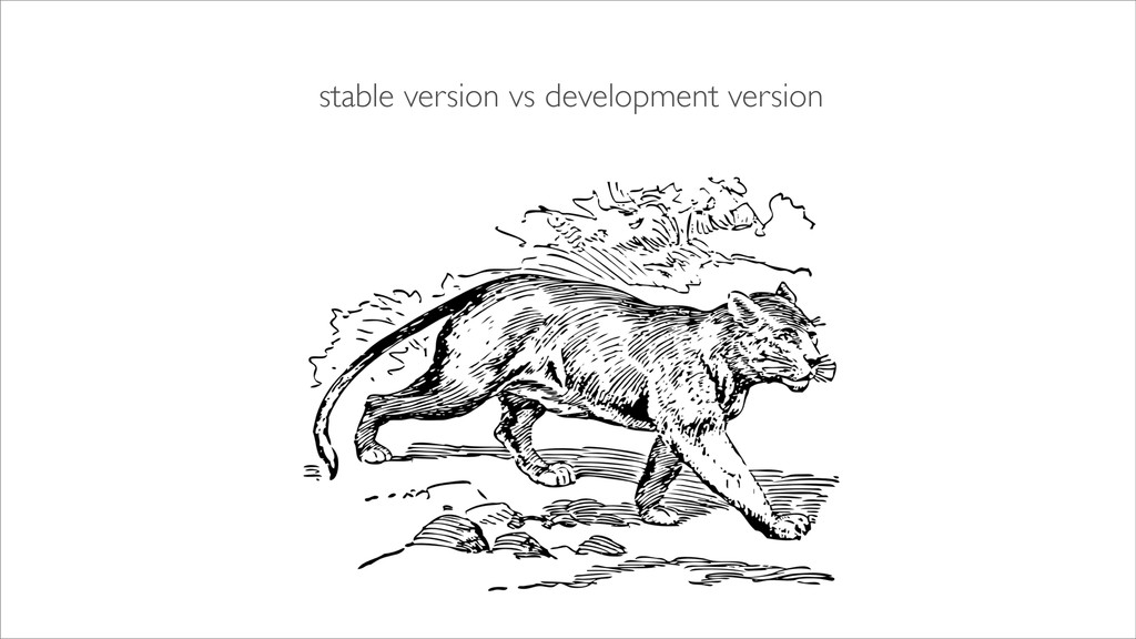stable version vs development version