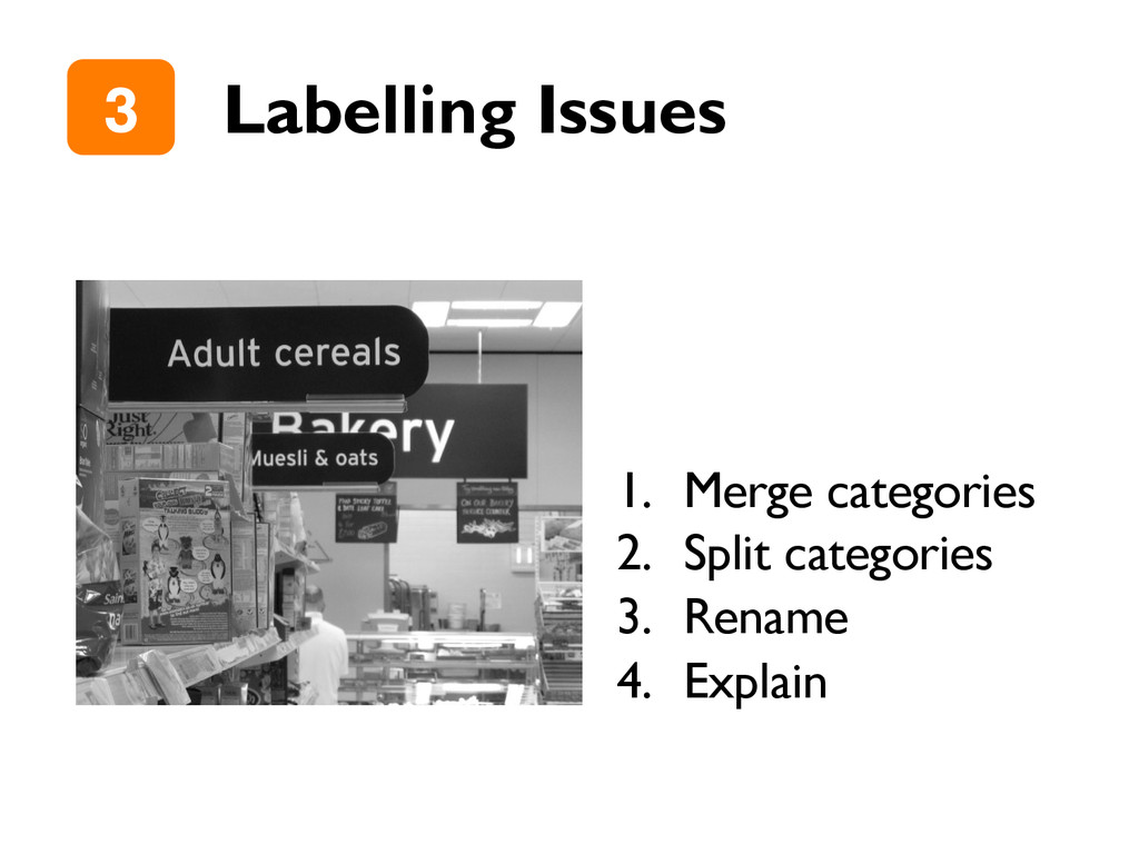 "Labelling Issues 3"" 1.  Merge categories 2.  Sp..."