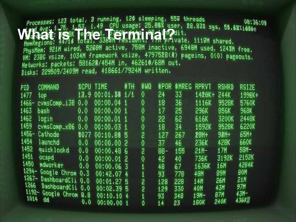 What is The Terminal?