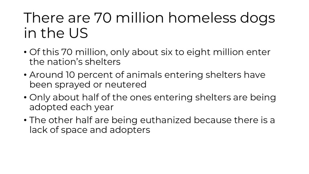 There are 70 million homeless dogs in the US • ...