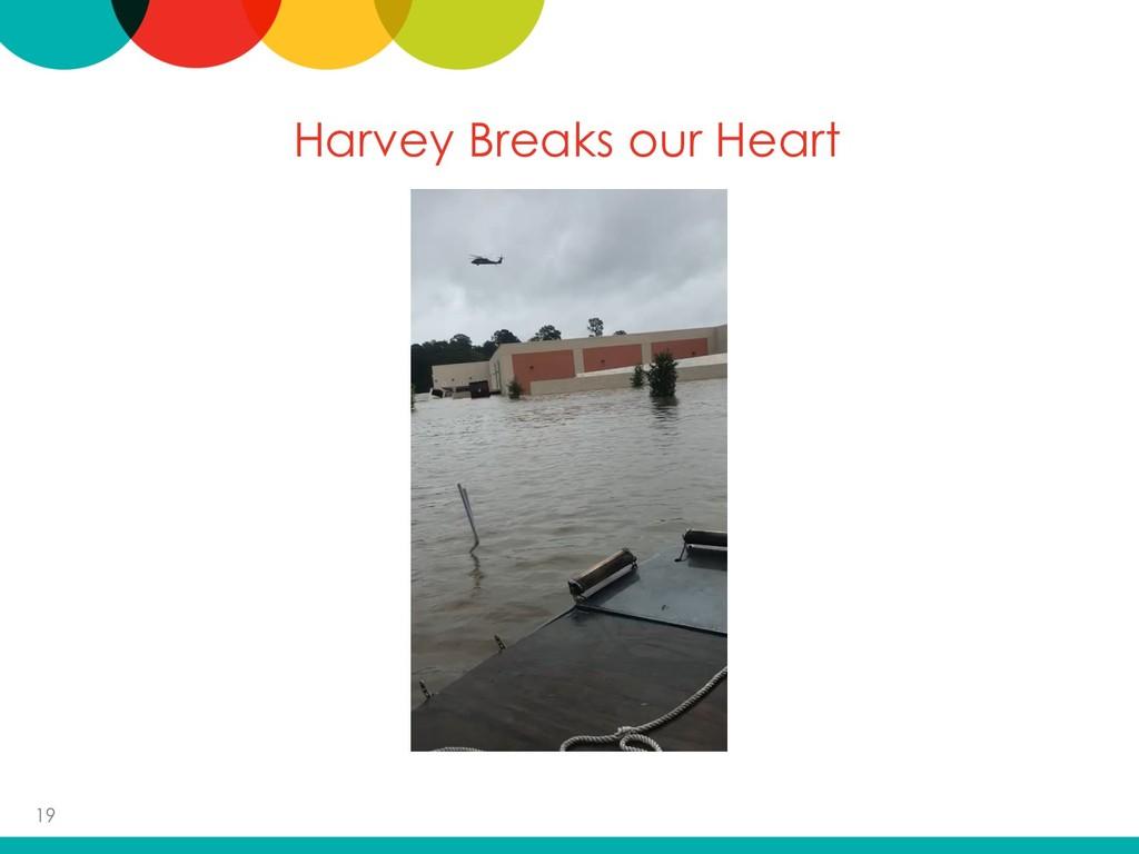 Harvey Breaks our Heart 19
