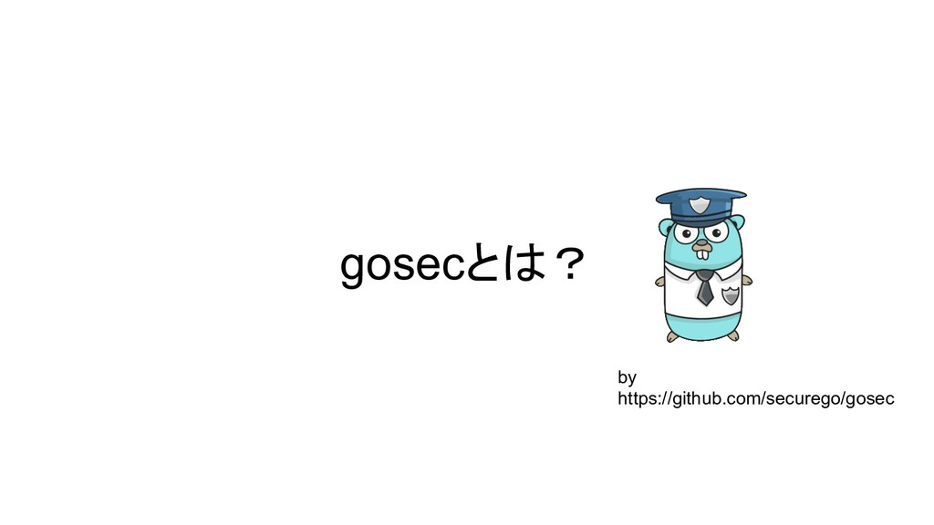 gosecとは? by https://github.com/securego/gosec