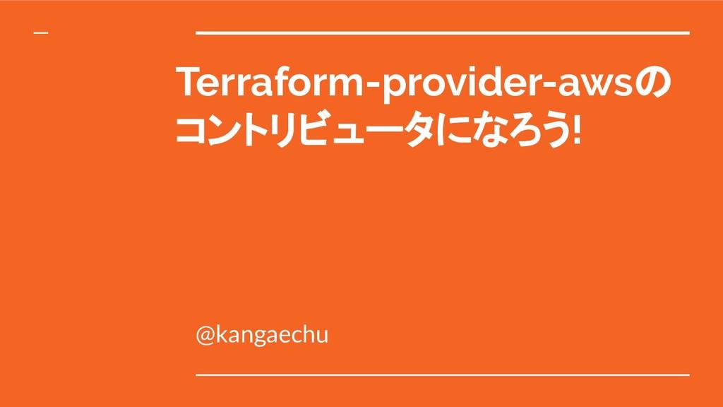 Terraform-provider-awsの コントリビュータになろう! @kangaechu