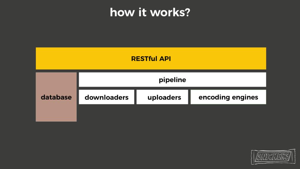 RESTful API database pipeline downloaders uploa...