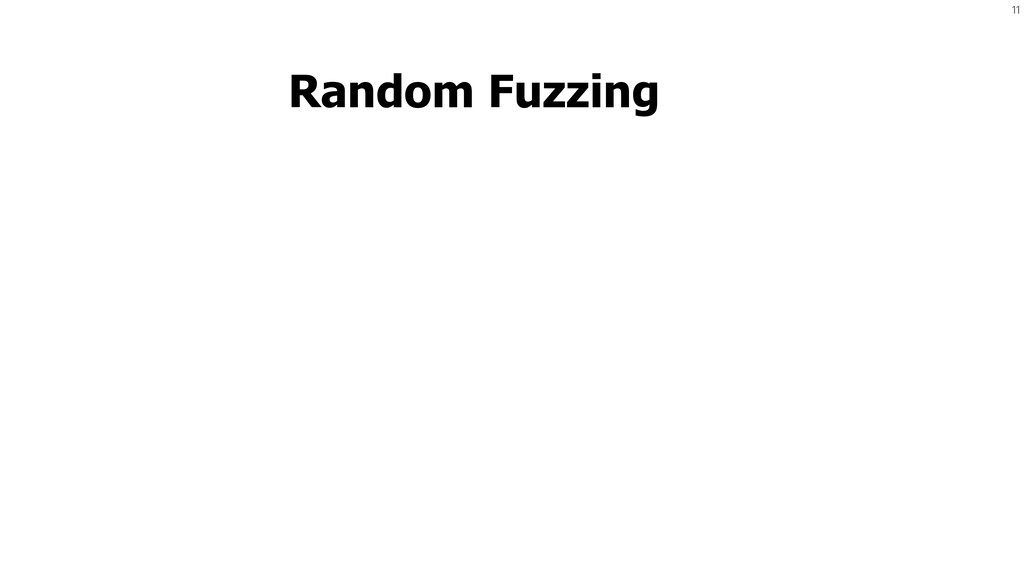 11 Random Fuzzing Program