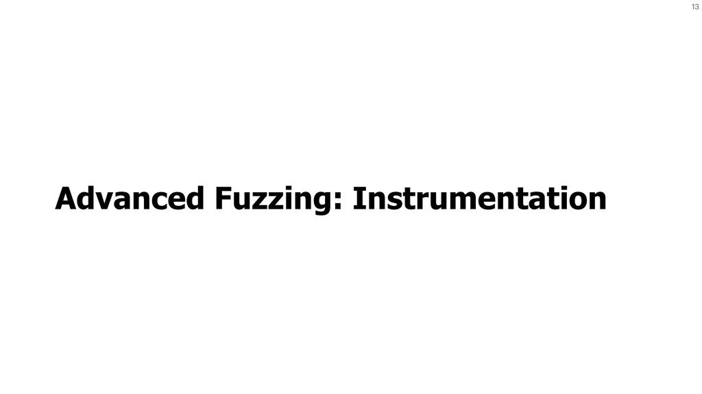 13 Advanced Fuzzing: Instrumentation