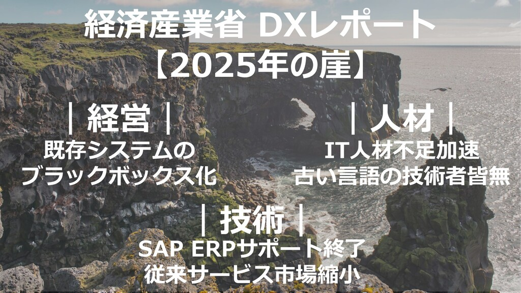 13 Confidential © 2020 LTS Inc. 経済産業省 DXレポート 【2...