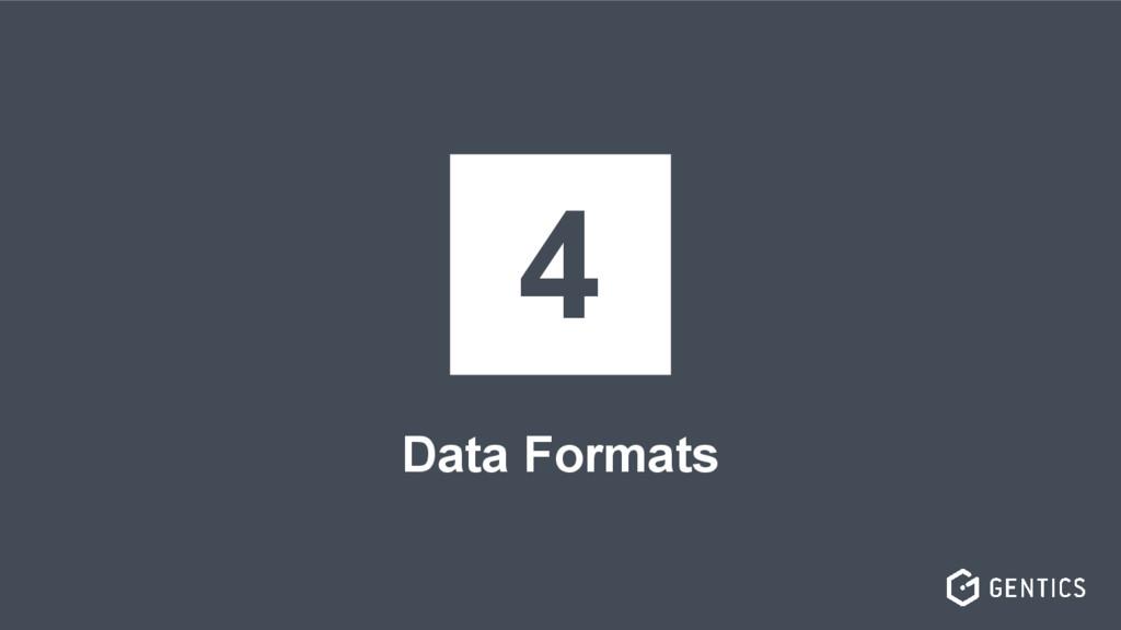 Data Formats 4