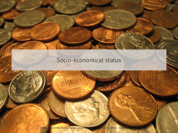 Socio-economical status https://commons.wikimed...