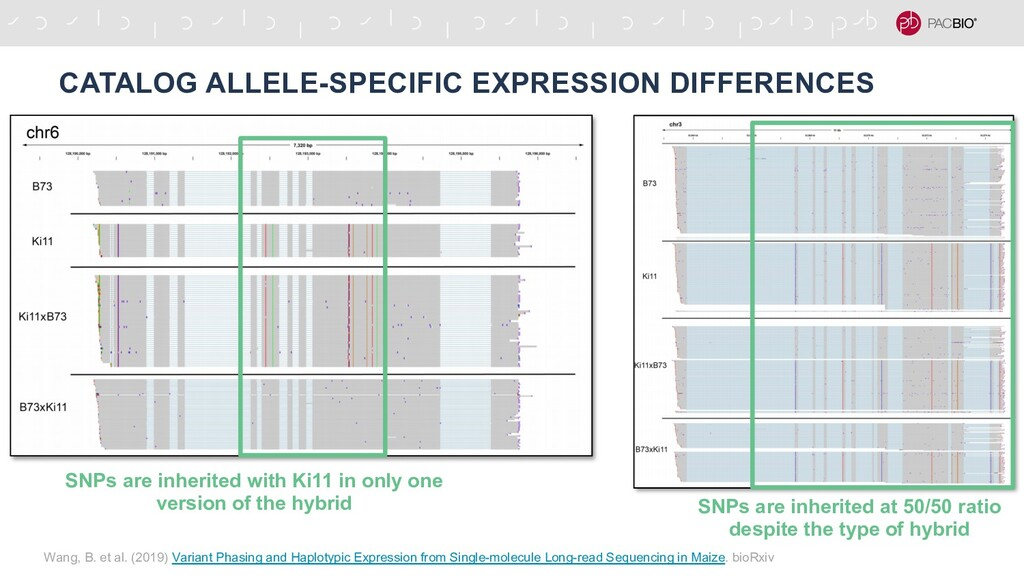 CATALOG ALLELE-SPECIFIC EXPRESSION DIFFERENCES ...