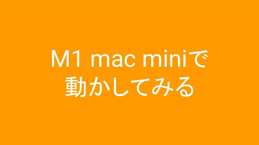 M1 mac miniで 動かしてみる
