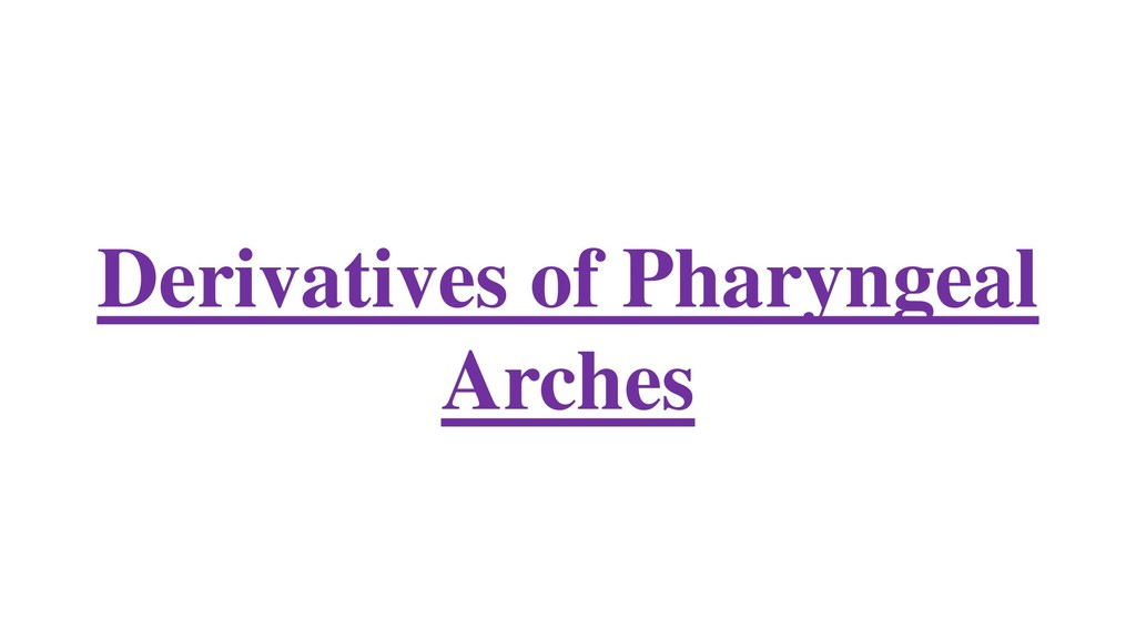 Derivatives of Pharyngeal Arches