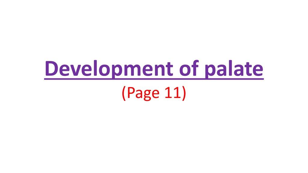 Development of palate (Page 11)