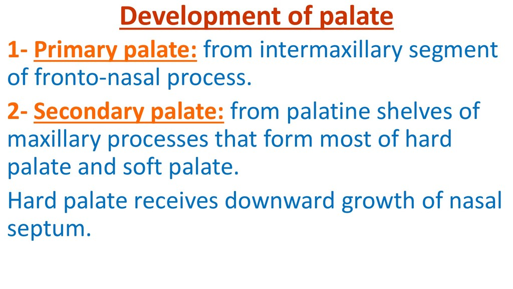 Development of palate 1- Primary palate: from i...