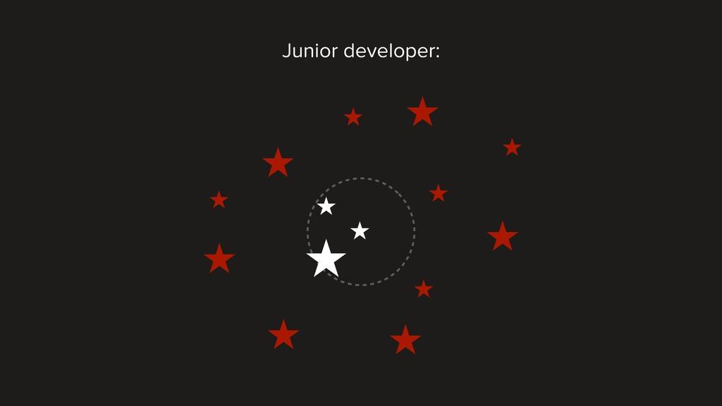 Junior developer: