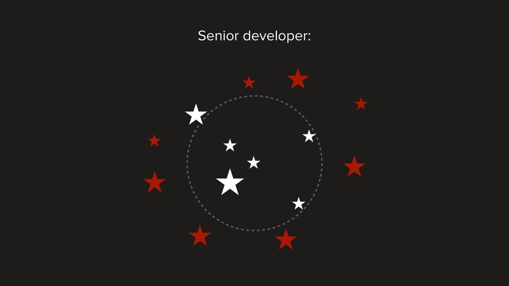Senior developer: