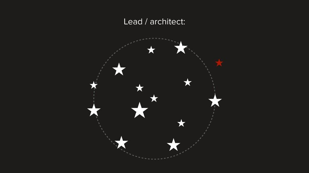 Lead / architect: