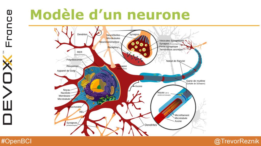 @TrevorReznik #OpenBCI Modèle d'un neurone