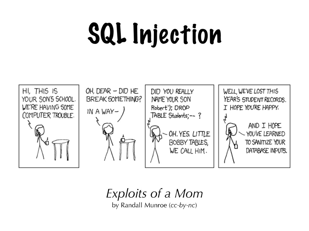 SQL Injection Exploits of a Mom by Randall Munr...