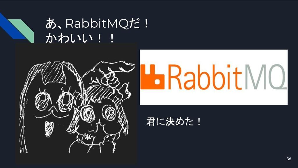 あ、RabbitMQだ! かわいい!! 36 君に決めた!
