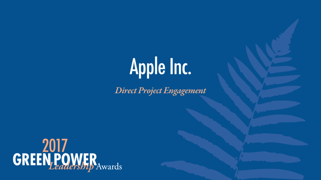 Apple Inc. Direct Project Engagement