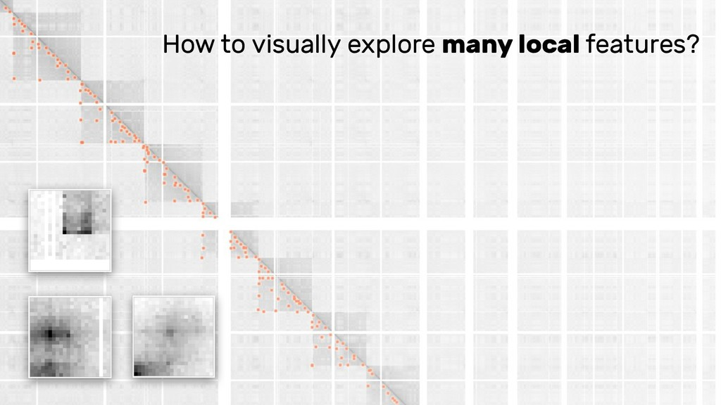How to visually explore many local features?