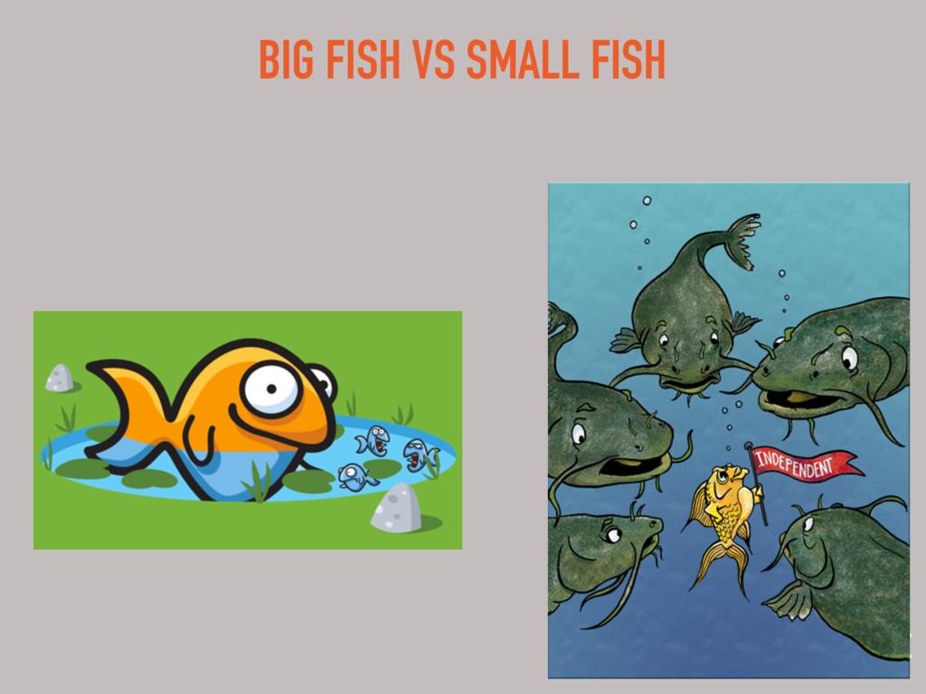 BIG FISH VS SMALL FISH
