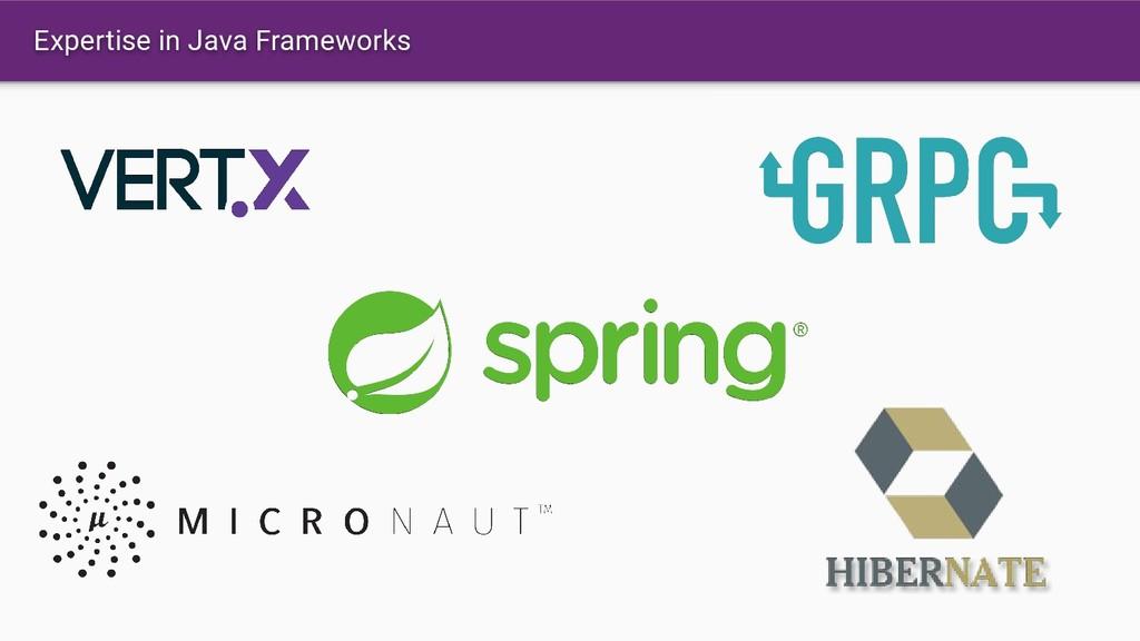 Expertise in Java Frameworks