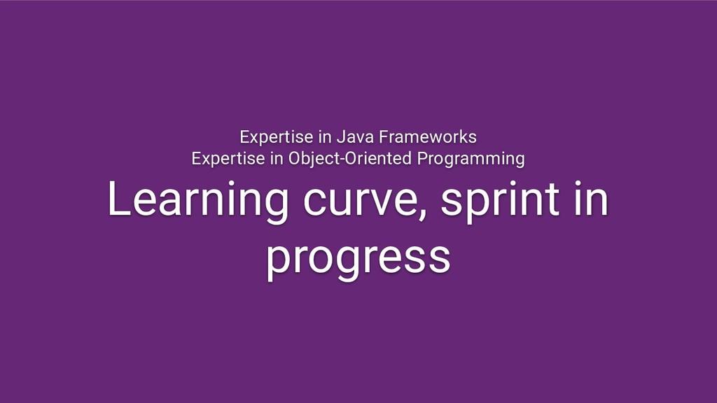 Expertise in Java Frameworks Expertise in Objec...