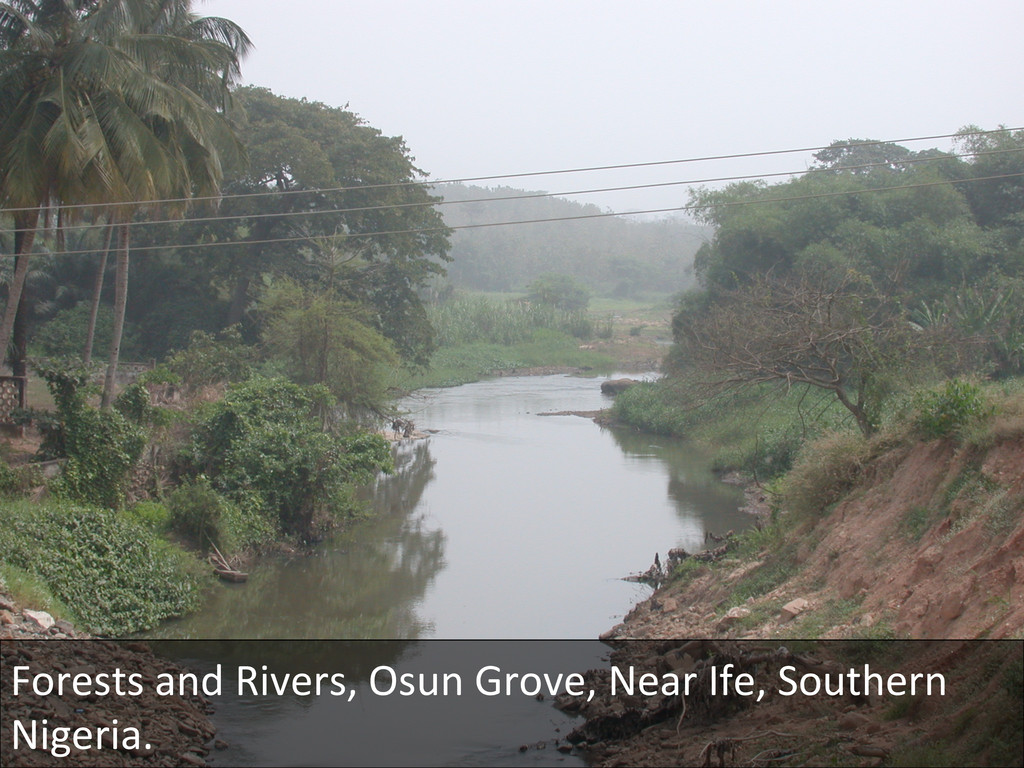 Forests and Rivers, Osun Grove, ...
