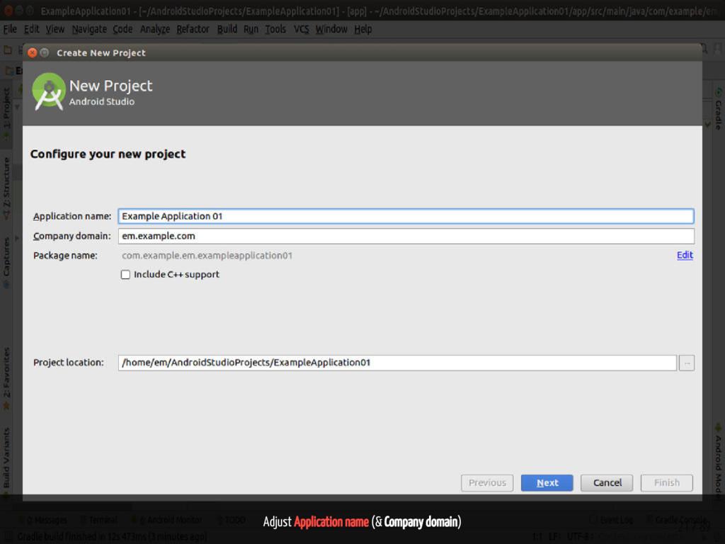 Adjust Application name (& Company domain) 21 /...