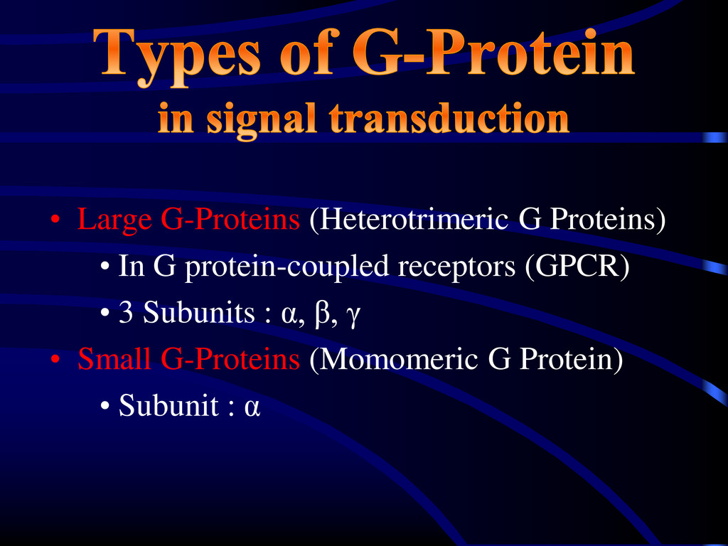 • Large G-Proteins (Heterotrimeric G Proteins) ...