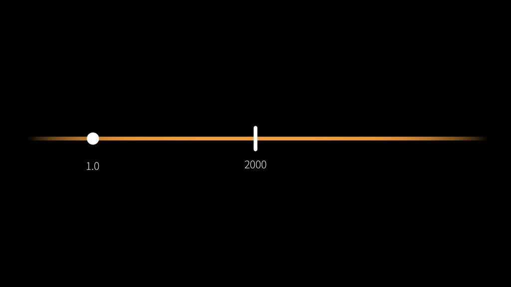 1.0 2000