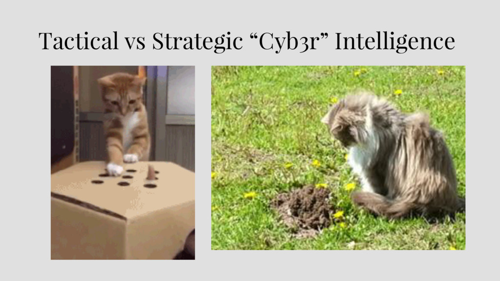 "Tactical vs Strategic ""Cyb3r"" Intelligence"