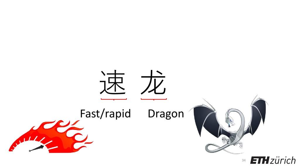 34 速 龙 Dragon Fast/rapid