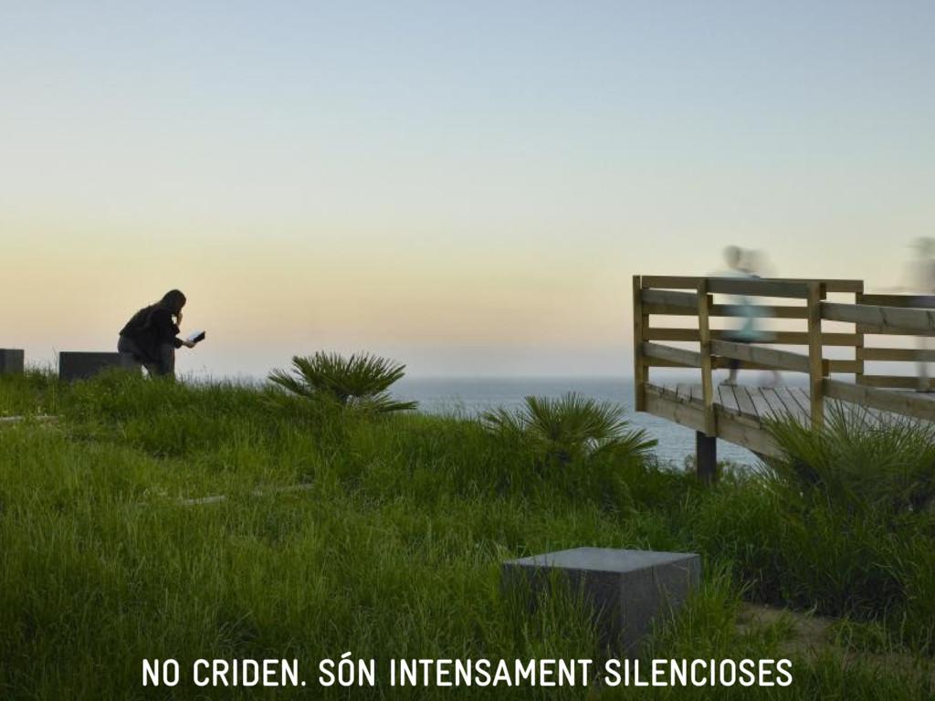 NO CRIDEN. SÓN INTENSAMENT SILENCIOSES