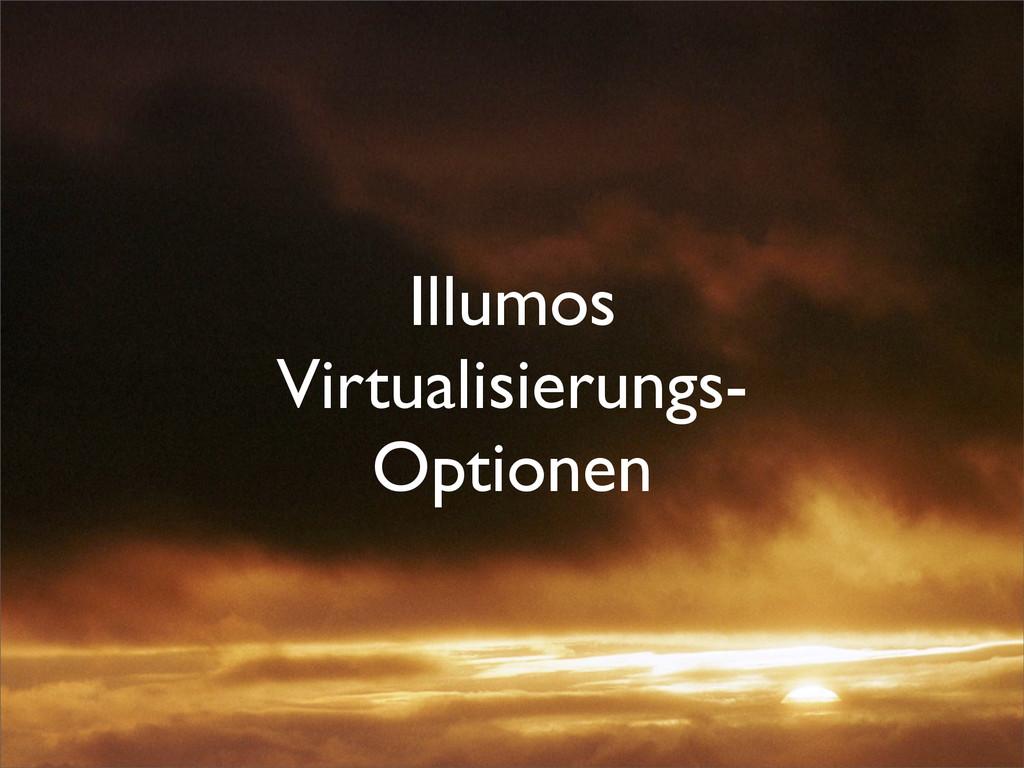 Illumos Virtualisierungs- Optionen