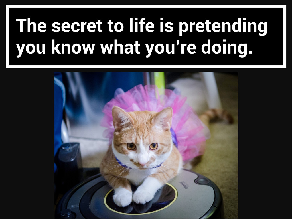 The secret to life is pretending you know what ...