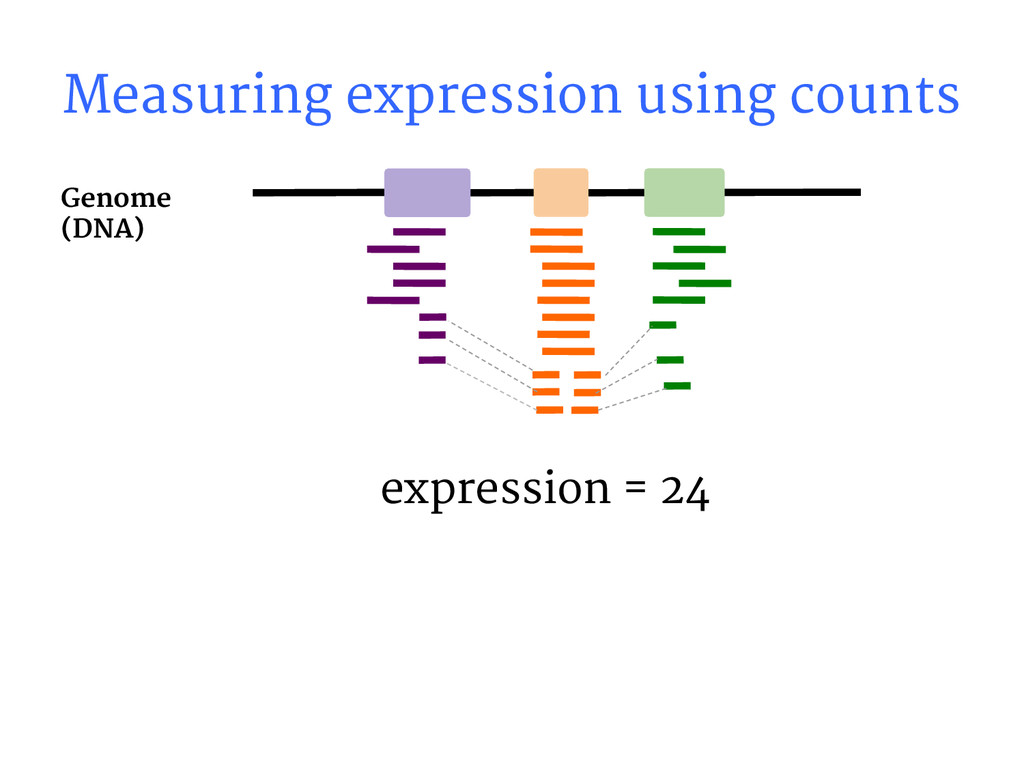 expression = 24 Genome (DNA) Measuring expressi...