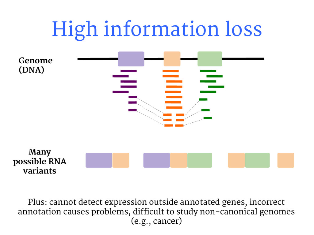 High information loss Many possible RNA variant...