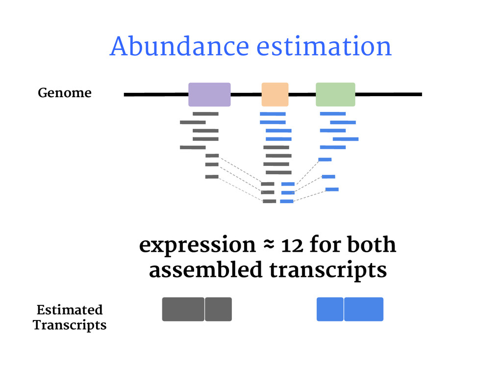 Abundance estimation expression ≈ 12 for both a...